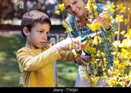 Happy senior woman looking at grandson clipping flowers at lawn - Stock Photo