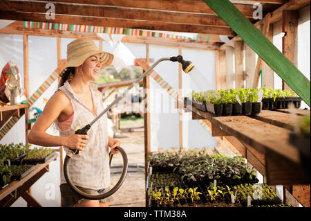 Happy female farmer watering seedling trays in greenhouse - Stock Photo