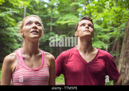 Couple hiking through forest looking upwards during summer - Stock Photo