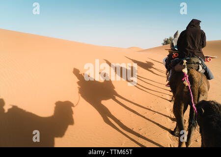 Rear view of friends sitting on camel at desert against sky during sunny day - Stock Photo