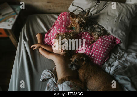 High angle view of boy sleeping with dogs on bed at home - Stock Photo