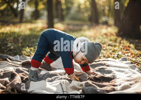 Full length of cute baby boy trying to stand on picnic blanket at park during autumn - Stock Photo