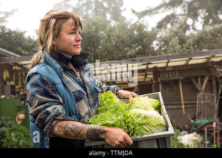 USA, California, Big Sur, Esalen, Kat carries some freshly picked lettuce from the Farm at the Escalen Institute - Stock Photo