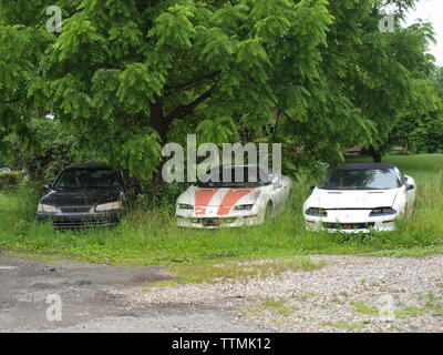 Abandoned classic cars in a New Jersey field near Hackettstown, New Jersey. Left to rot, these classics sit forlorn and seemingly forgotten. - Stock Photo