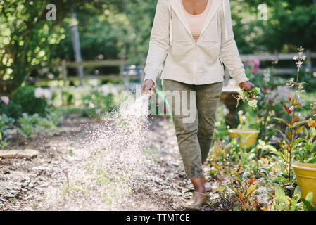 Low section of woman watering plants in garden - Stock Photo