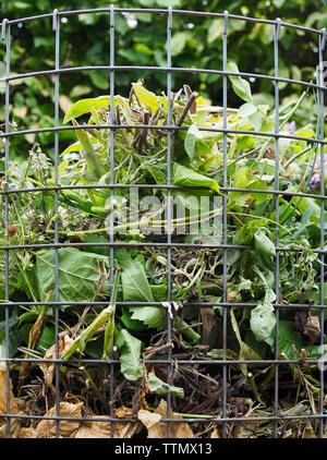 Offene Kompostierung (offene Miete) in einem Kleingarten in der Schweiz - Stock Photo