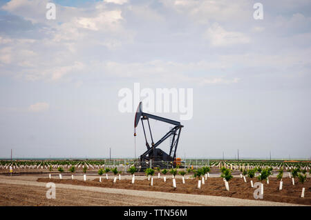Oil pump on agricultural field against sky - Stock Photo