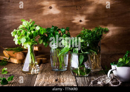 Selection of fresh homegrown organic culinary and aromatic herbs plant in glass jars on wooden background, home gardening, close up, selective focus. - Stock Photo
