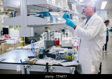 Male doctor examining test tubes in laboratory - Stock Photo