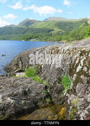 View of the rocky shoreline on the eastern side of Loch Lomond at Rowardennan, on a clear sunny day in June 2019 - Stock Photo