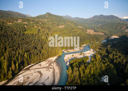 Scenic view of river amidst trees in forest - Stock Photo