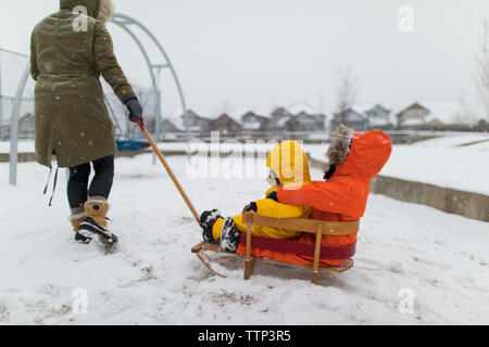 Active mother pulls siblings on wooden sled at the park. - Stock Photo