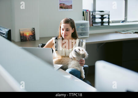 Businesswoman with dog using laptop computer at desk in office - Stock Photo