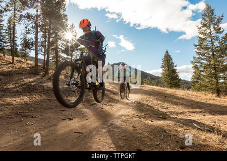Friends mountain biking on dirt road in forest against cloudy sky - Stock Photo