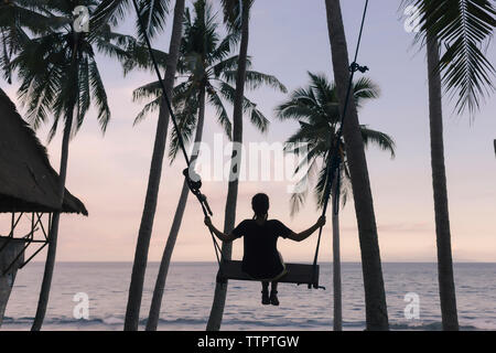 Rear view of young woman swinging on rope swing against coconut palm trees at beach during sunset - Stock Photo
