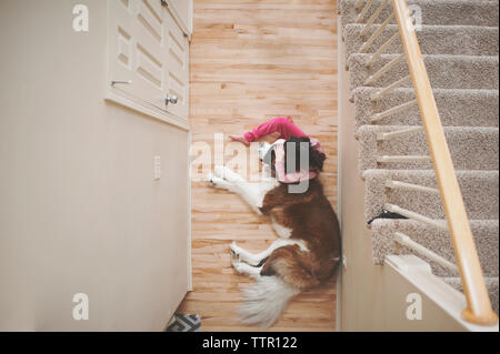 High angle view of girl sitting by Saint Bernard sleeping on floor at home - Stock Photo