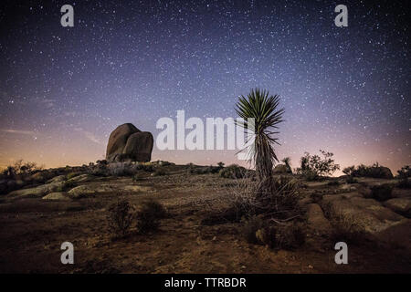 Scenic view of landscape against star field at night - Stock Photo