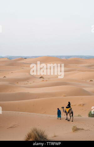 Rear view of woman riding on camel at Sahara Desert against clear sky - Stock Photo