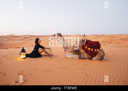 Side view of woman with camel sitting on sand at Sahara Desert against clear sky - Stock Photo