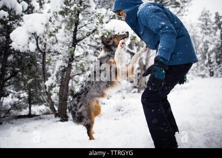 Side view of teenager playing with dog on snow covered field - Stock Photo