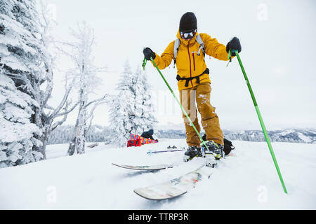 skier clips in to binding after hiking to ski Wyoming backcountry - Stock Photo