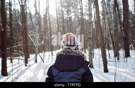 Rear view of boy standing in forest during winter - Stock Photo