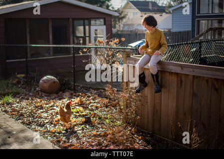 A happy child in yellow sits on a backyard fence smiling at a chicken - Stock Photo