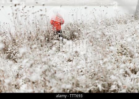 Rear view of boy carrying umbrella while standing in forest during winter - Stock Photo