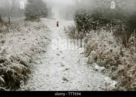 Rear view of boy with umbrella standing in forest during winter - Stock Photo