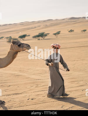 OMAN, Wahiba Sands, teenage boy leading camel in Wahiba Sands - Stock Photo