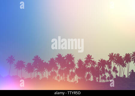 Palm trees on tropical beach, vintage toned and retro film light flare stylized - Stock Photo