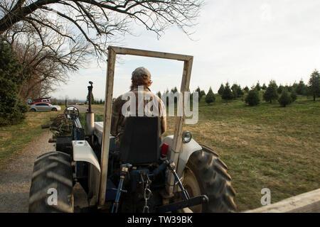 Small family dairy farm near Port Austin Michigan MI Stock ...