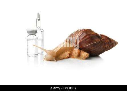 Giant Achatina snail and ampules on white background. Medicine and cosmetology concept - Stock Photo
