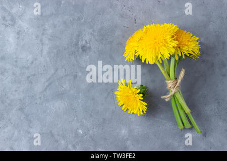 Bouquet of summer dandelion flowers on gray background. Top view with copy space. - Stock Photo