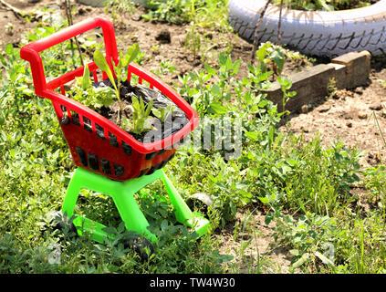 Children cart as flowerbed in green garden - Stock Photo