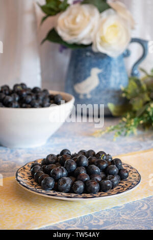 Fresh picked blueberries on a plate and in a white bowl with tablecloth and  flowers in background presented in light and bright kitchen environment. - Stock Photo