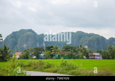 Maros, Indonesia - June 2018 : Karst landscape with limestone domes and rice field. - Stock Photo
