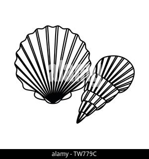 silhouette of seashell on the sea in white background - Stock Photo