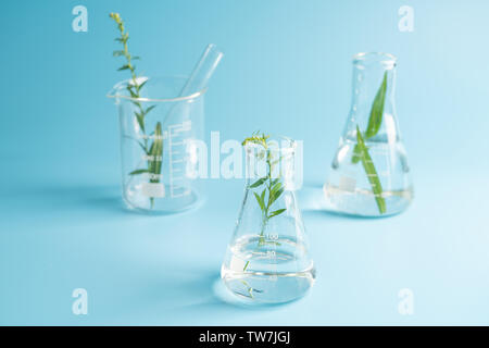 Equipment commonly used in medical research and chemical experiments - Stock Photo