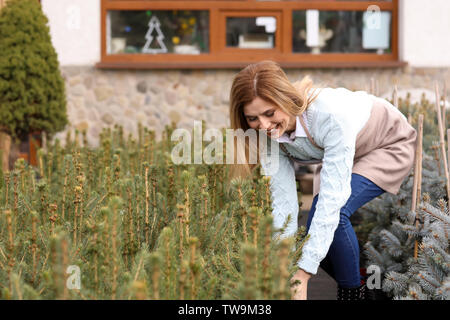 Business owner working with plants in her store, outdoors - Stock Photo