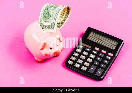 I love a smell of money. planning and counting budget. moneybox with calculator. Piggy bank. income capital management. bookkeeping. financial problem. money saving. Accounting and payroll. - Stock Photo
