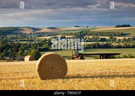 Straw bales on the hill above the village of Corton in the Wylye Valley in Wiltshire. - Stock Photo