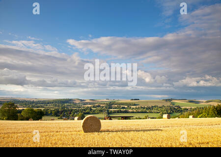 Straw bales on the hill above the village of Corton in the Wylye Valley, Wiltshire. - Stock Photo