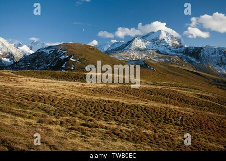 Austria, Tyrol, Zillertal Alps. - Stock Photo