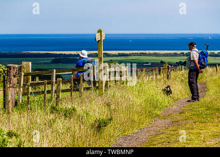 A couple of walkers admiring the summer view to the sea from St Cuthbert's Way footpath near Holburn, Northumberland, UK. June 2019. - Stock Photo