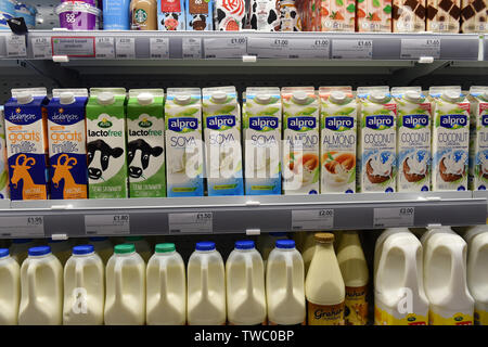 Different milks on sale in a supermarket UK - Stock Photo