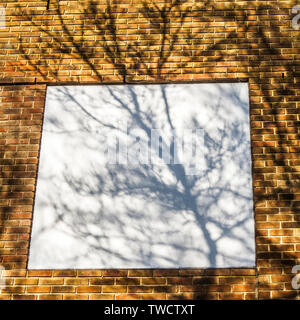 shadows of tree branches and leaves on urban walls in bright sunlight - Stock Photo