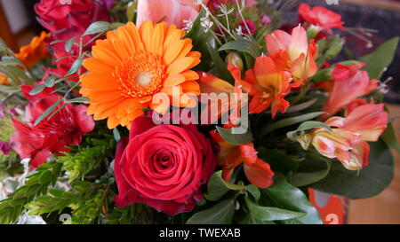 A bouquet of beautiful summer flowers - Stock Photo