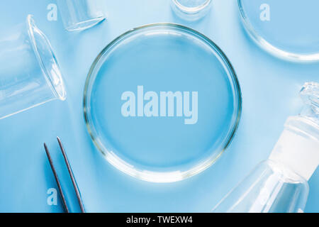 Petri dish with liquids and pincers in laboratory on blue table. Fluid testing. Top view. - Stock Photo