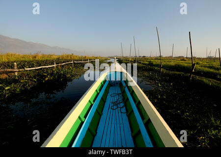 A canoe makes its way through the floating vegetable gardens on Inle Lake. - Stock Photo
